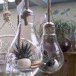 Réalisations ampoules suspendues avec plantes grasses