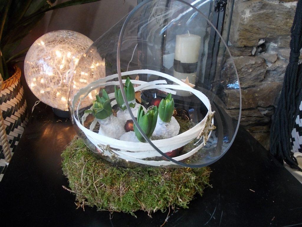 cloche en verre avec jacinthes