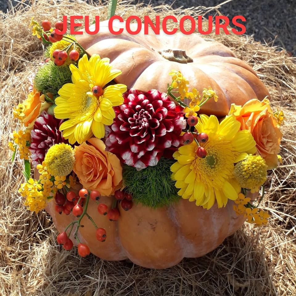 citrouille, fleurs coupées,Halloween
